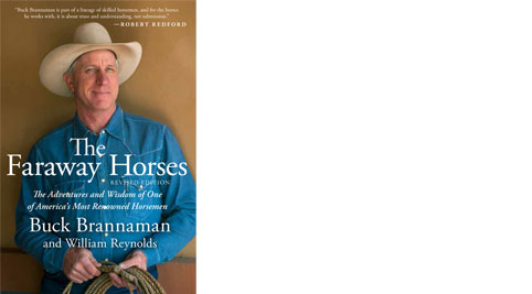 book cover The Faraway Horses